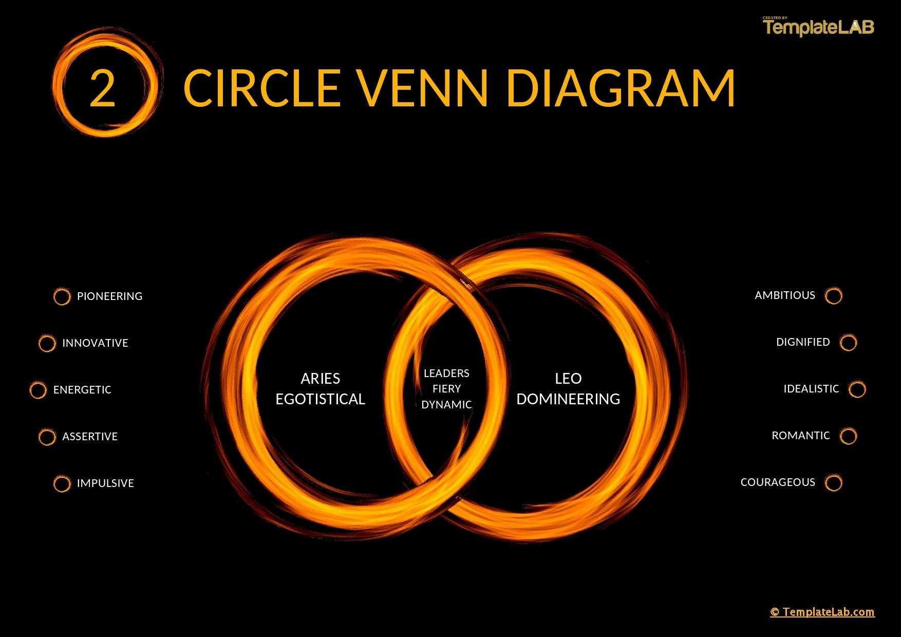 Free 2 Circle Venn Diagram Template 03 - TemplateLab.com