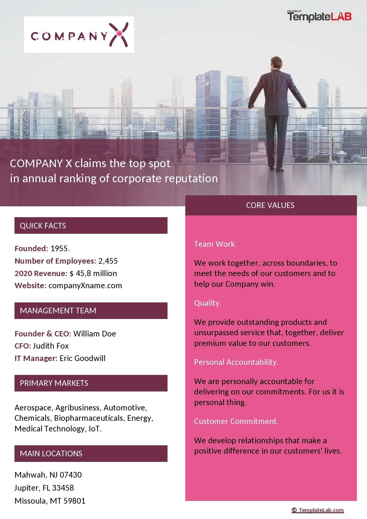 Free Company Fact Sheet Template - TemplateLab.com