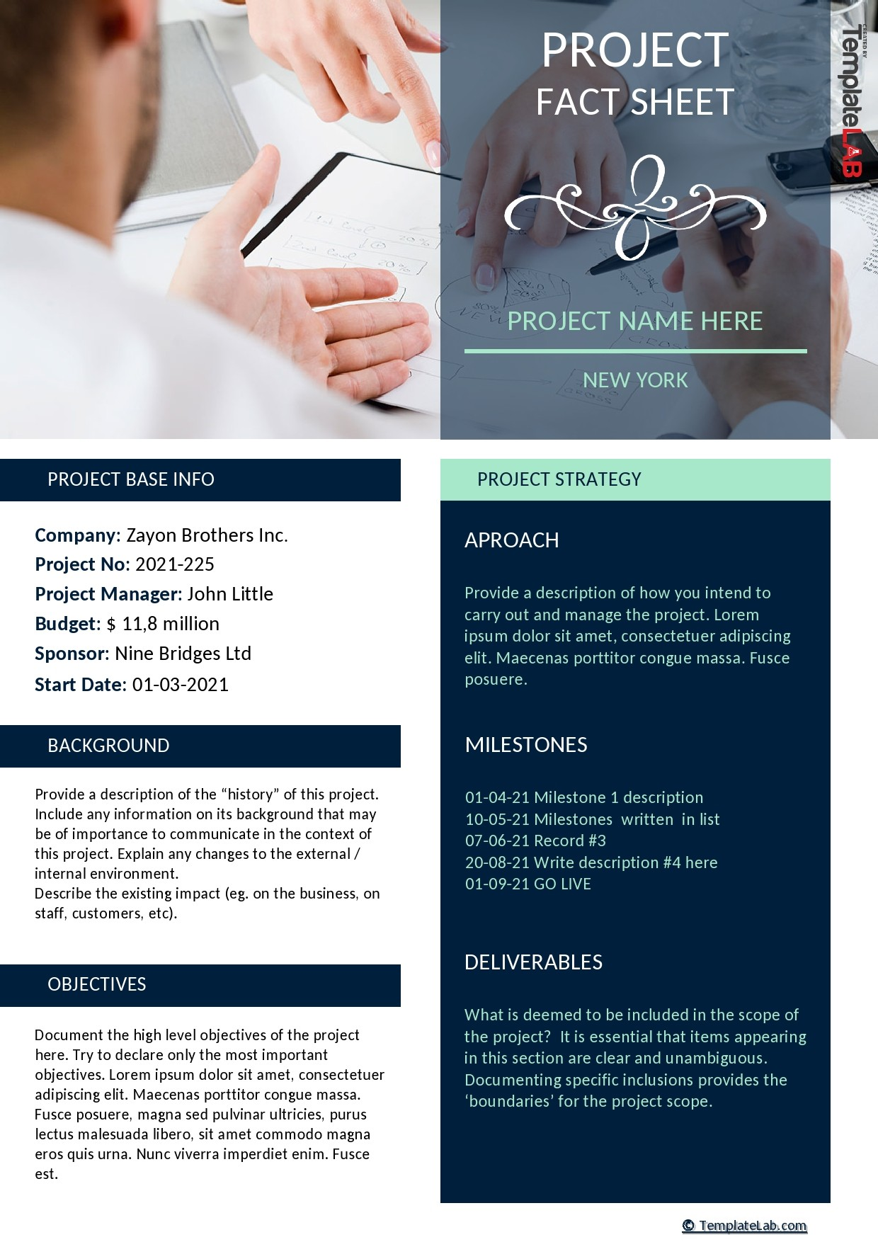 Free Project Fact Sheet Template - TemplateLab.com