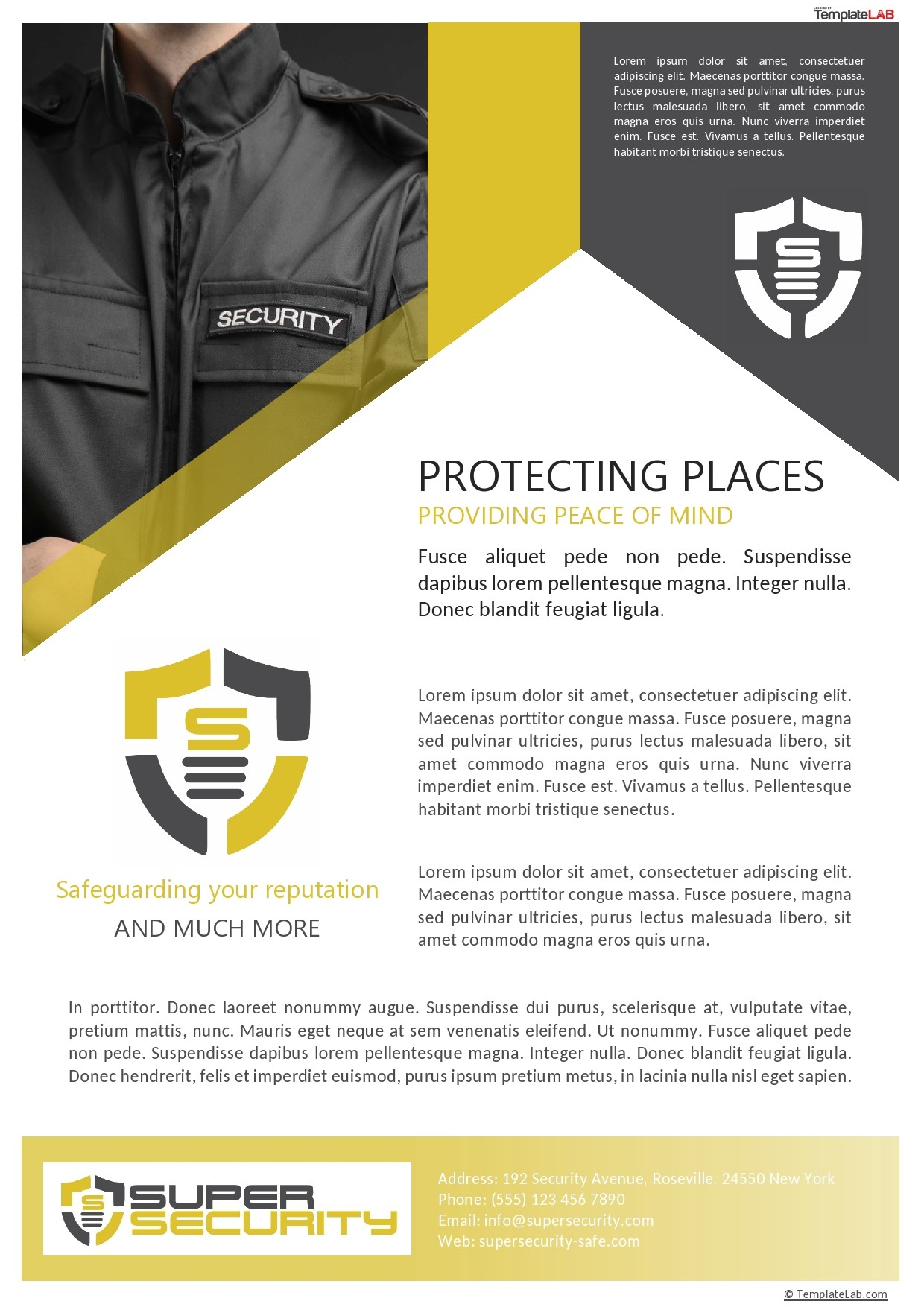 Free Security Company Profile Template - TemplateLab.com