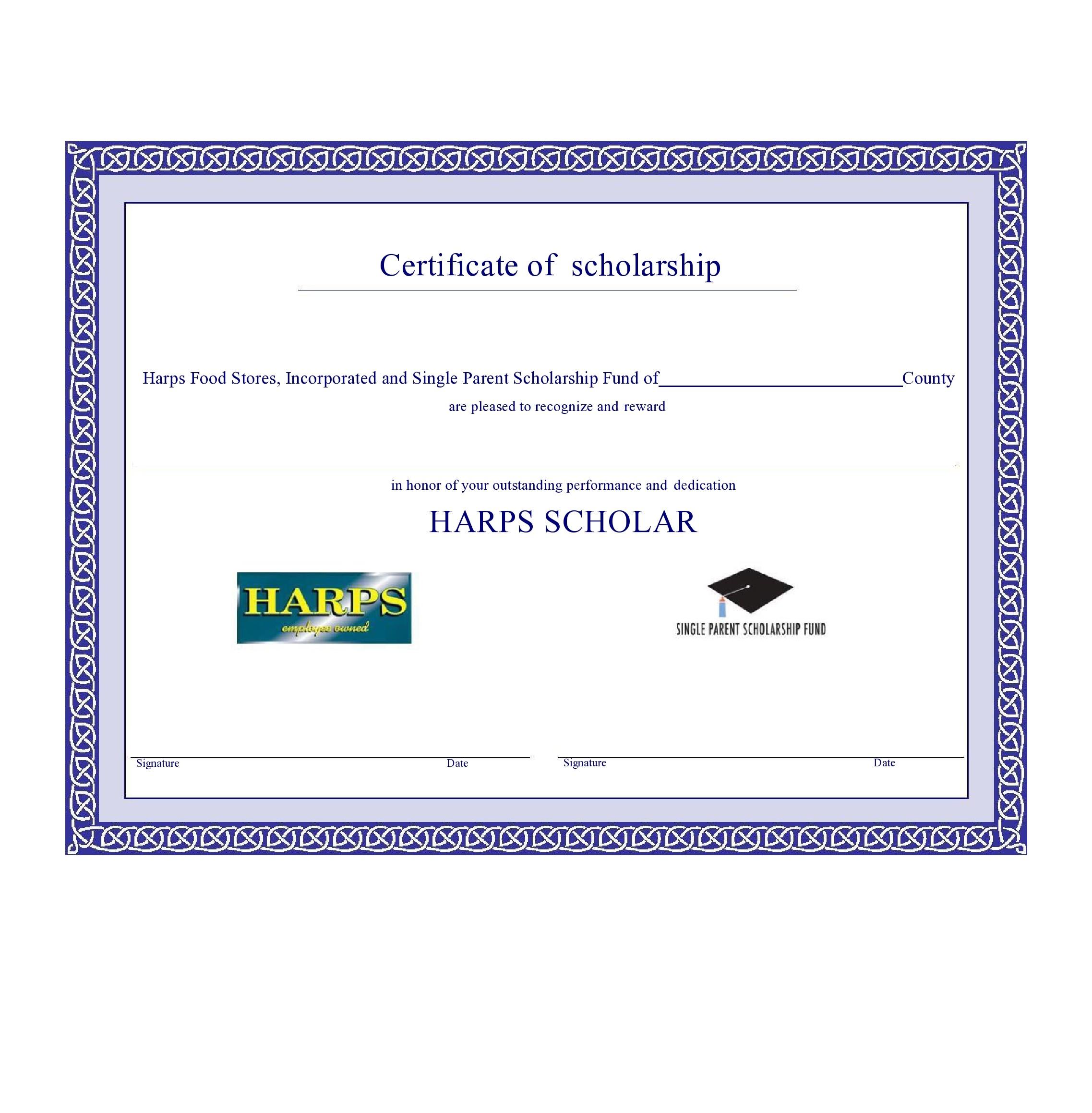 Free scholarship certificate 13