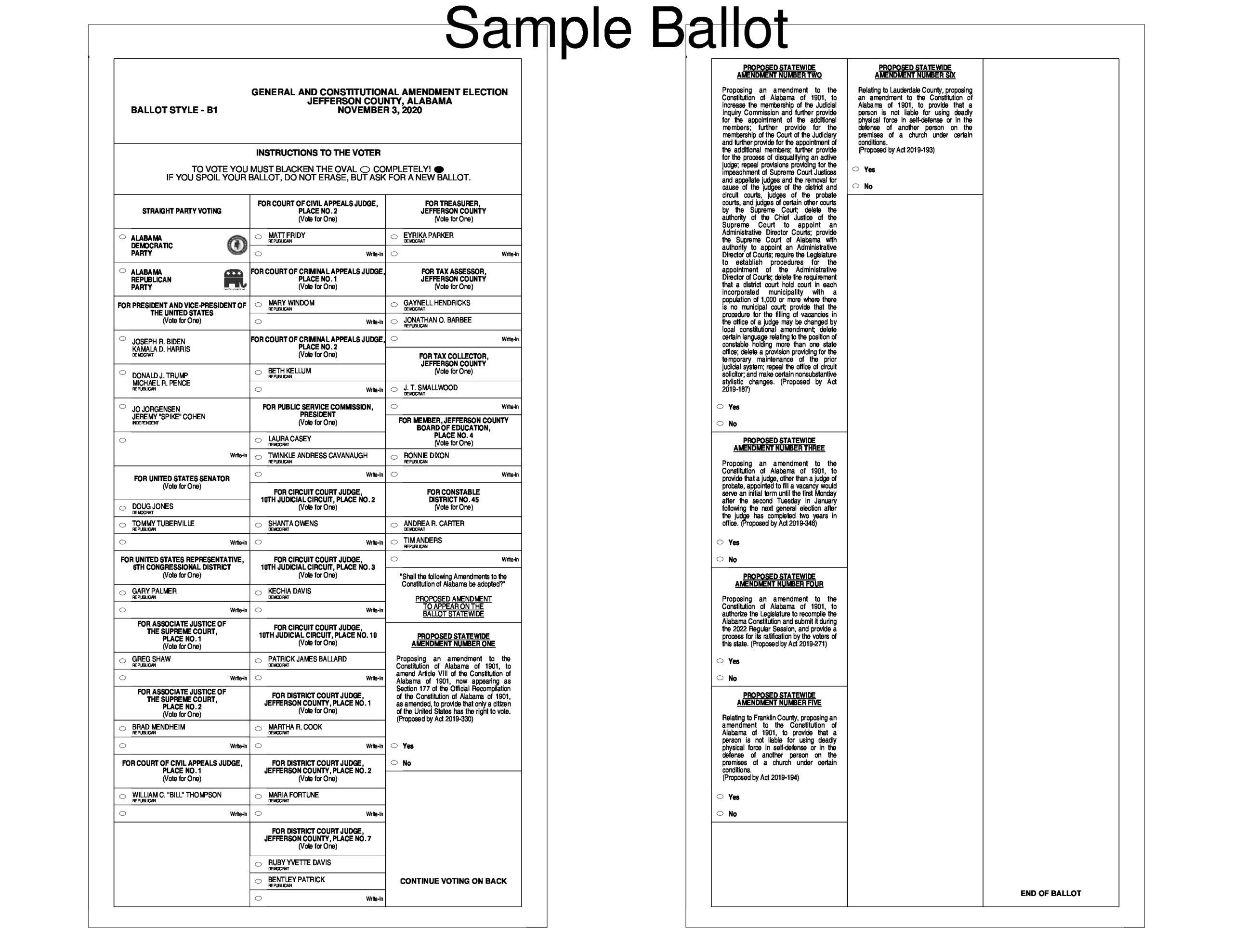 Free ballot template 08