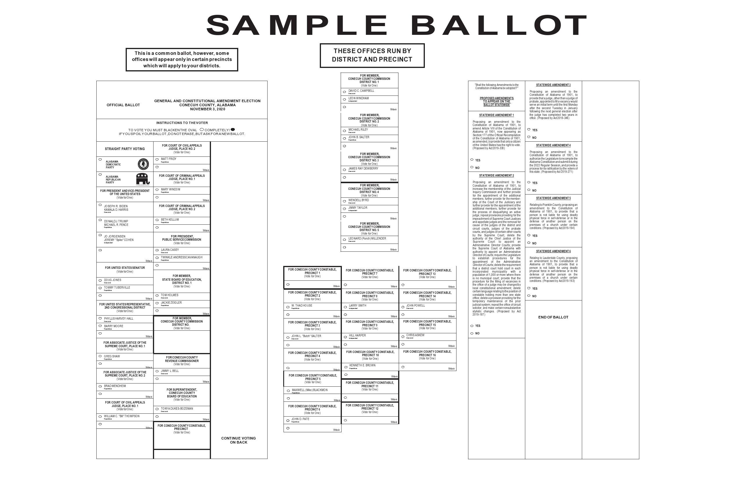 Free ballot template 31