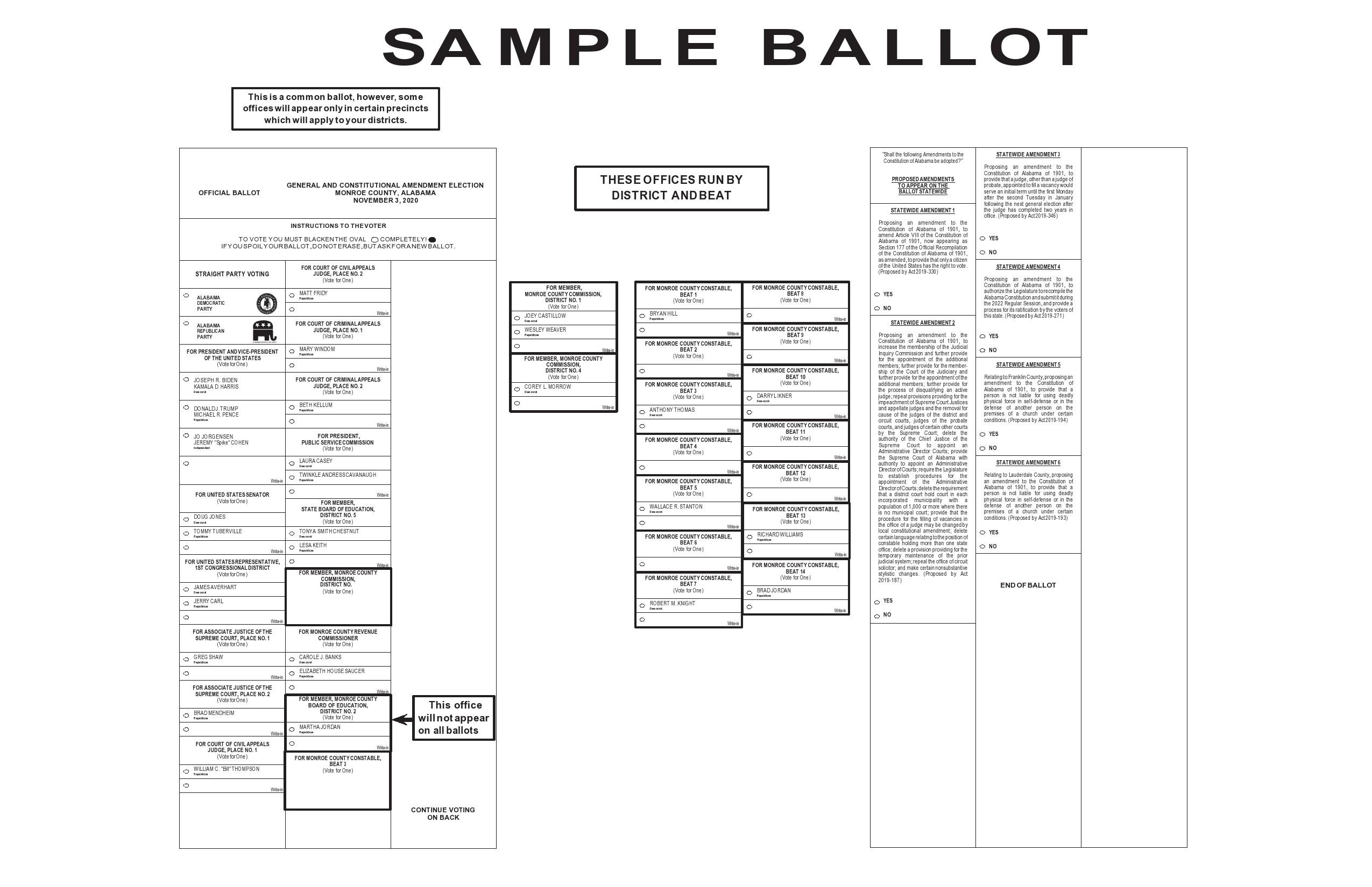 Free ballot template 35