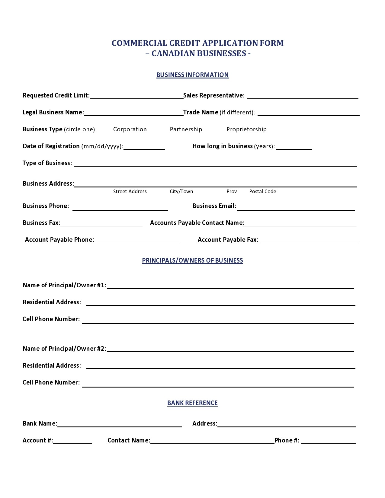 Free business credit application 41
