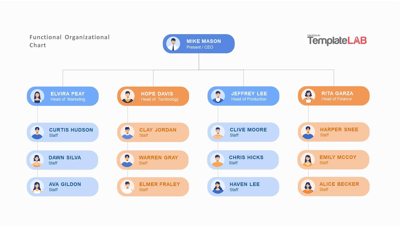 Free Functional Organizational Chart Template