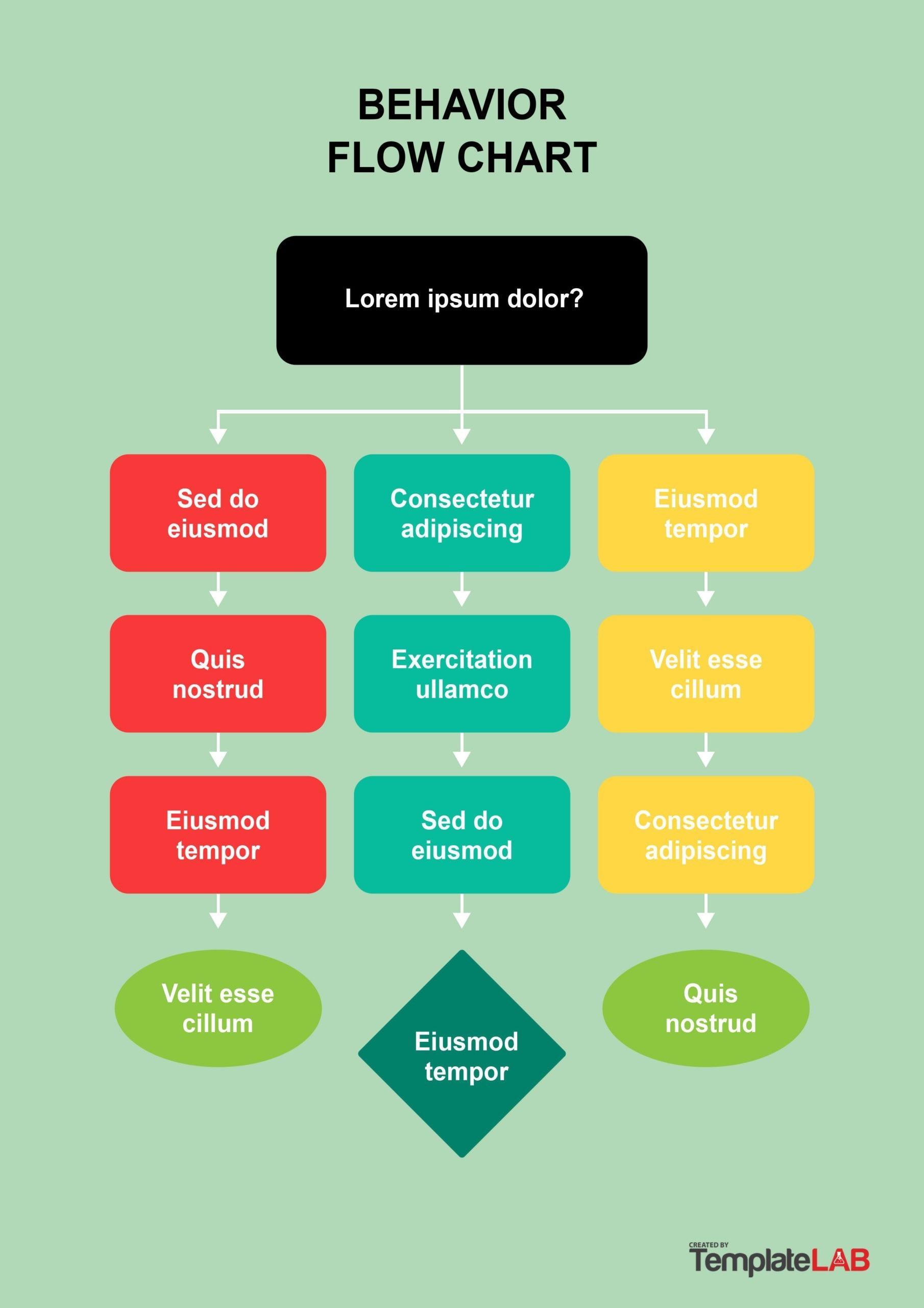 Free Behavior Flow Chart