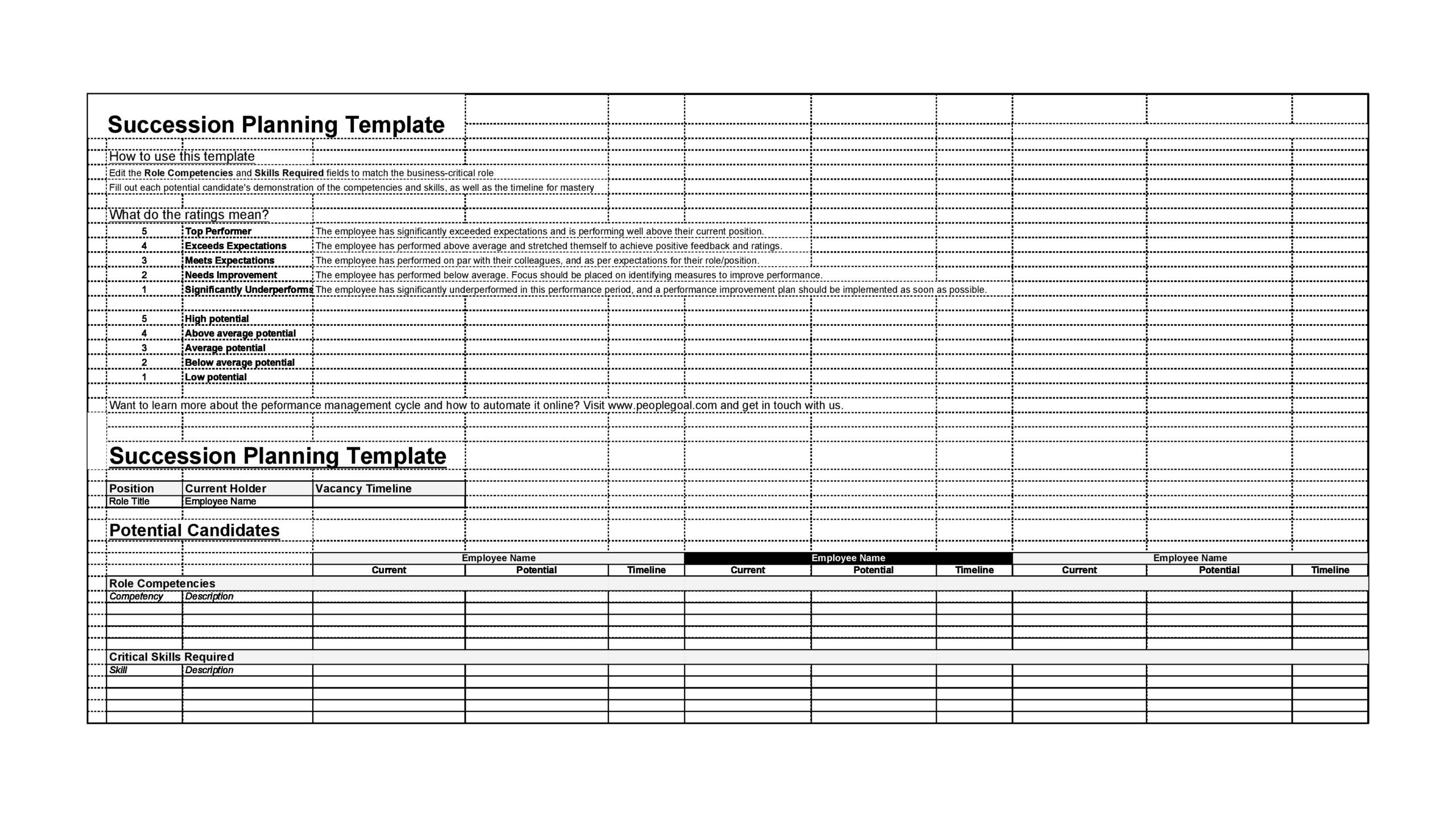 Free succession planning template 13