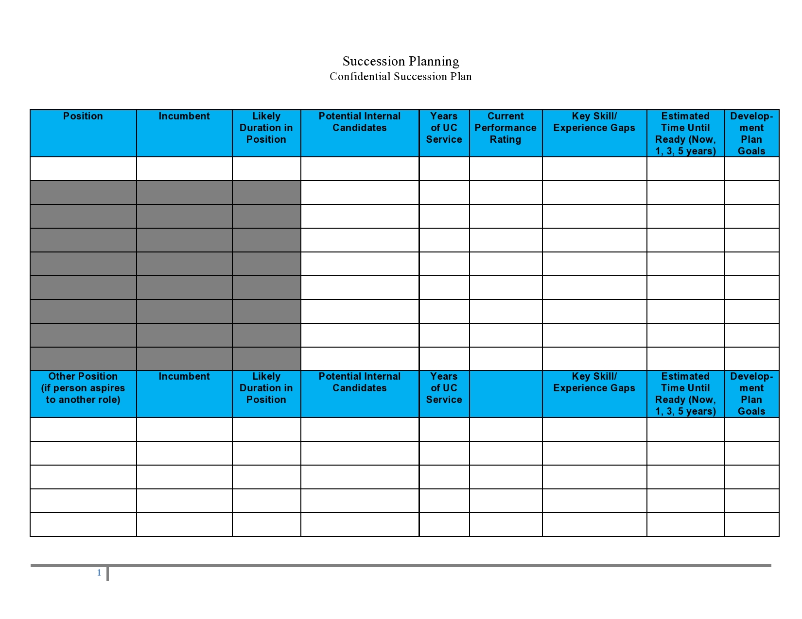Free succession planning template 15
